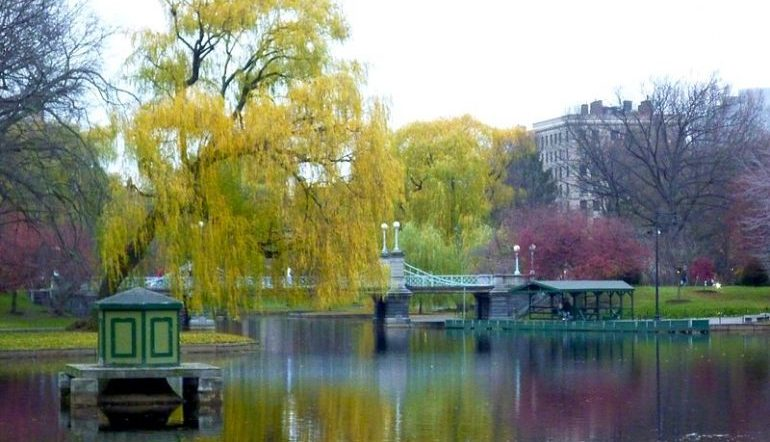 pond at Boston Public Garden with view of the bridge and pink and yellow-green trees