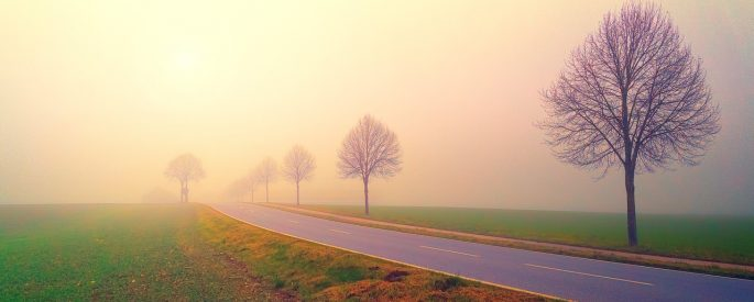 Photo of a a misty road in the early morning hours.