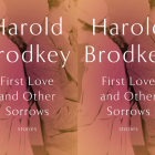 Cover art of Harold Brodkey's First Love and Other Sorrows