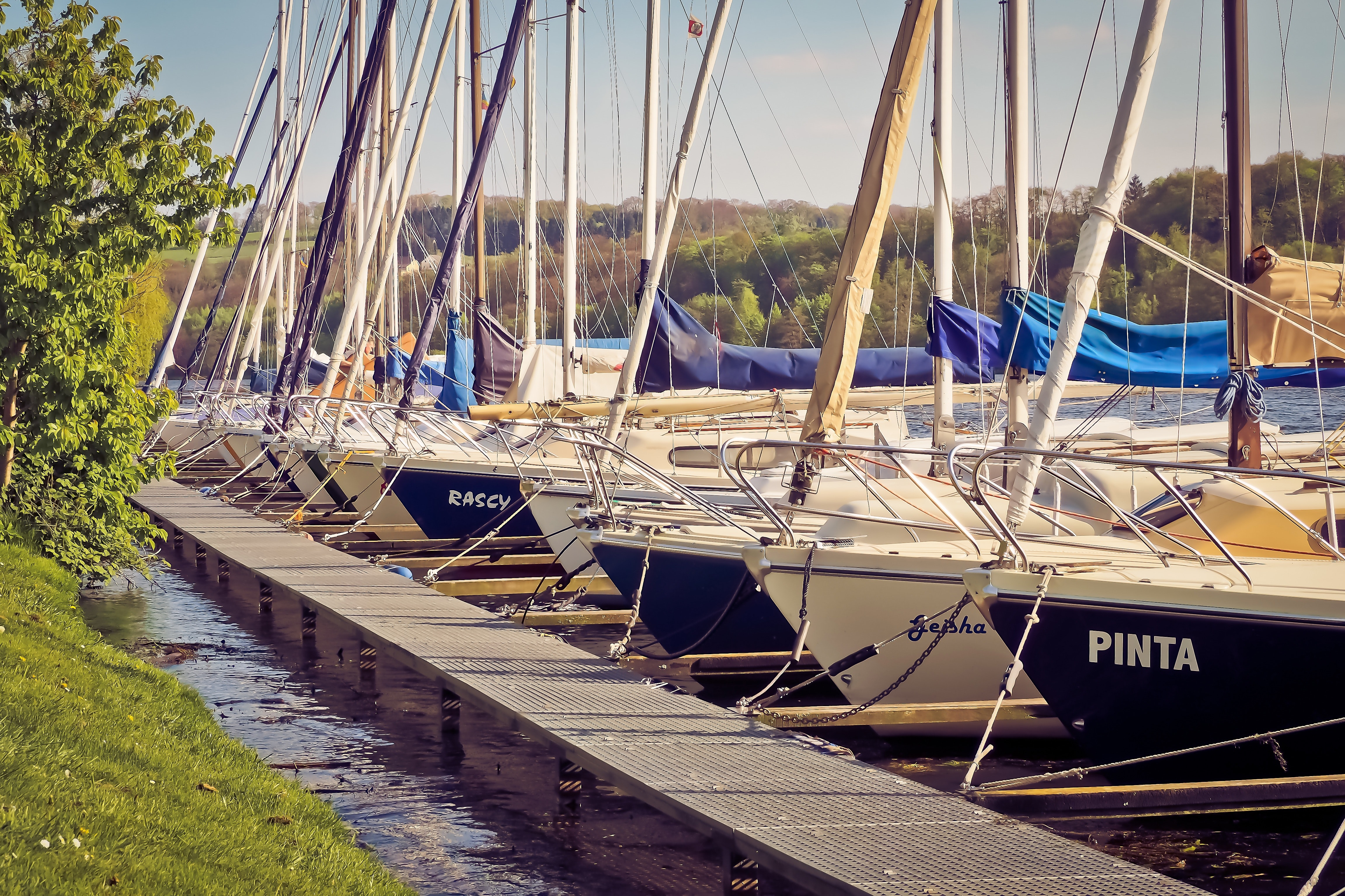 Photograph of a harbor with sailboats docked.