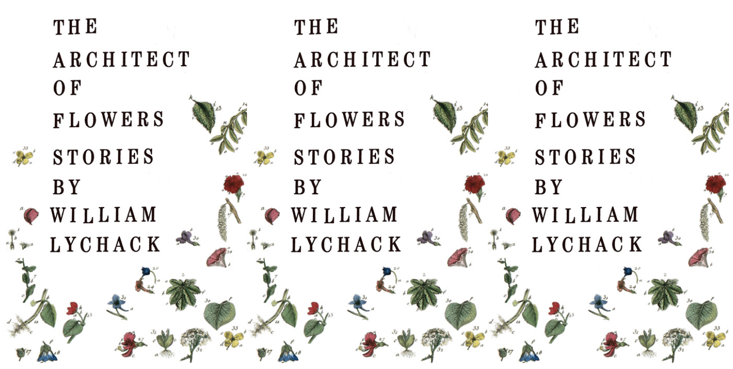 Cover art of William Lychack's The Architect of Flowers