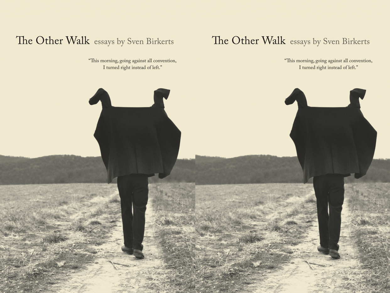 Cover art for The Other Walk by Sven Birkerts