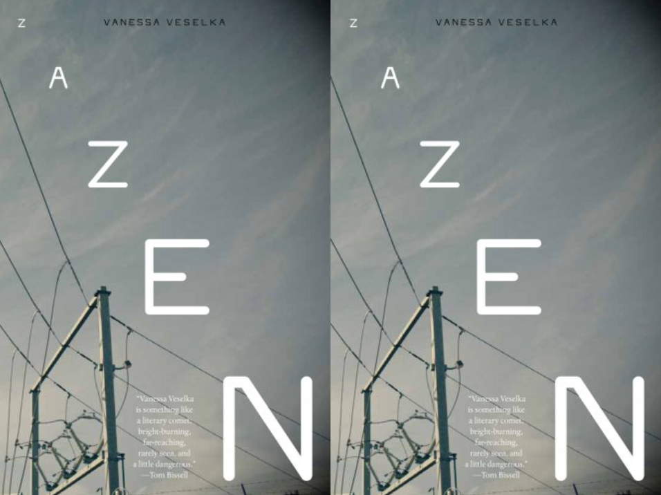 Cover art for Zazen by Vanessa Veselka