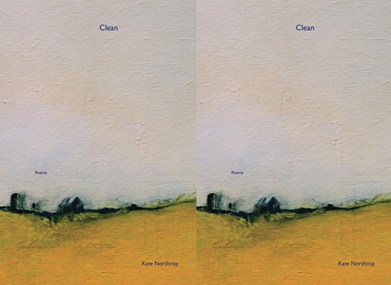 Cover art for Clean by Kate Northrop