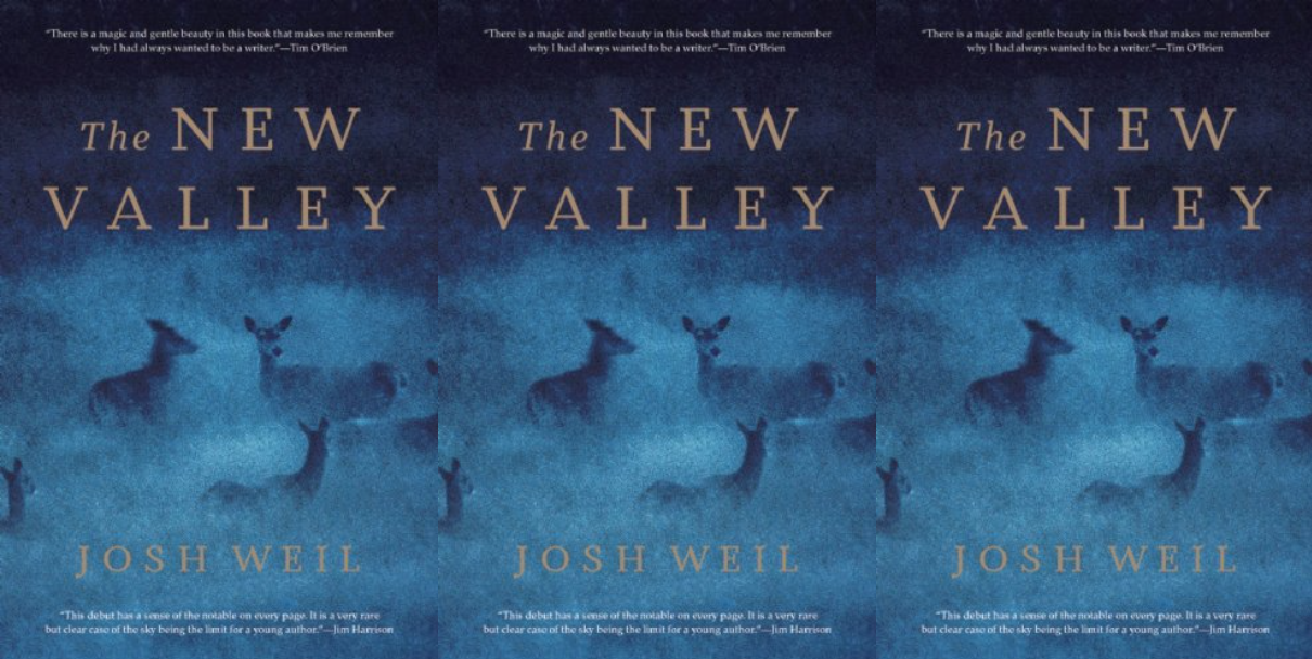 Cover art for The New Valley by Josh Weil