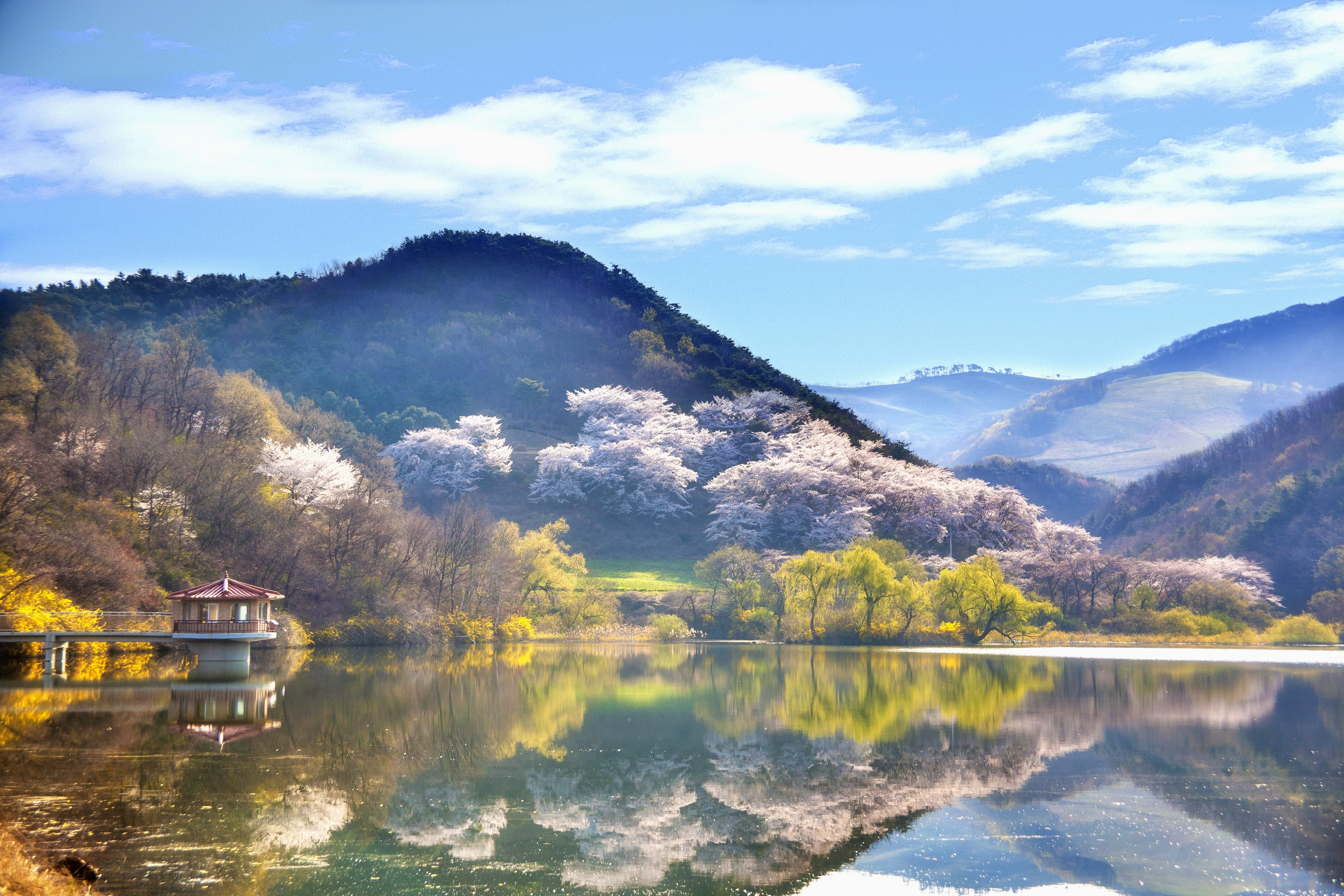 Photograph if a lake in Korea, with a mountainous background and beautiful blossoming trees