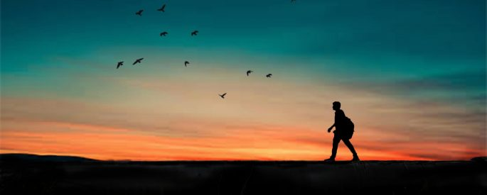 Silhouette of a man walking along a flat path, with a sunset behind him and birds flying in the sky
