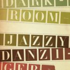 cover of Dark Room by Jazzy Danzinger