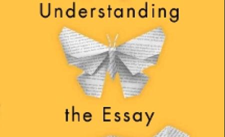 cover of Understanding: An Essay