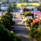 blurred photograph of a suburban street with tall trees and colorful roofs