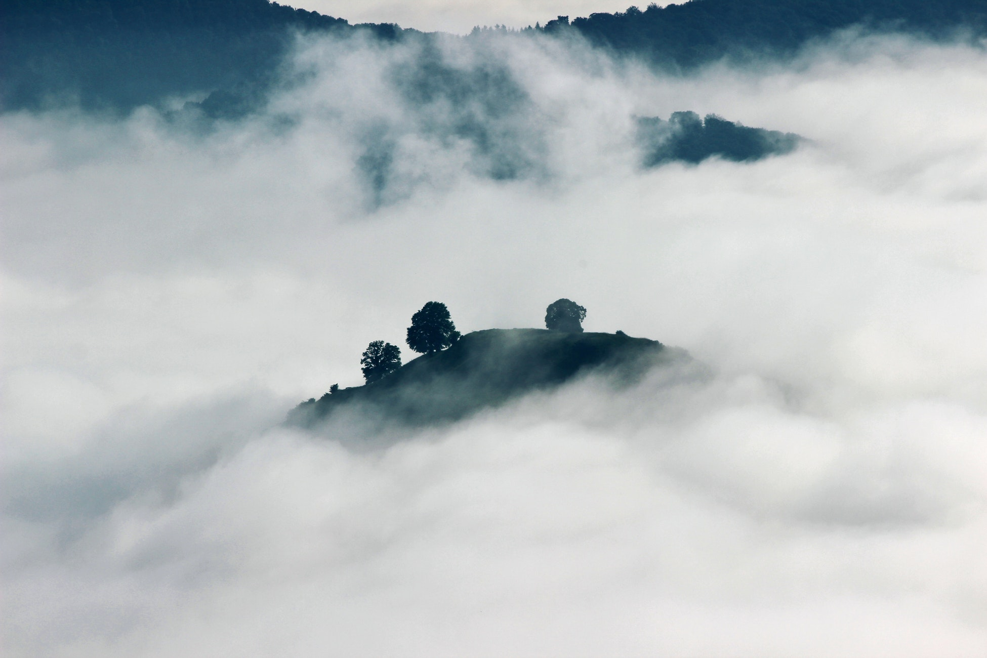 An overlooked landscape of clouds, the tops of mountains with trees cut through the low-hanging clouds