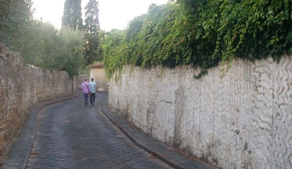 Firenze-Ploughshares