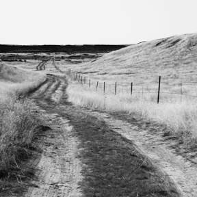 Othello Grasslands, WA. 2012. Melanie Masson.