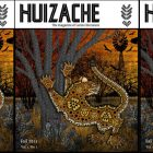 Huizache cover