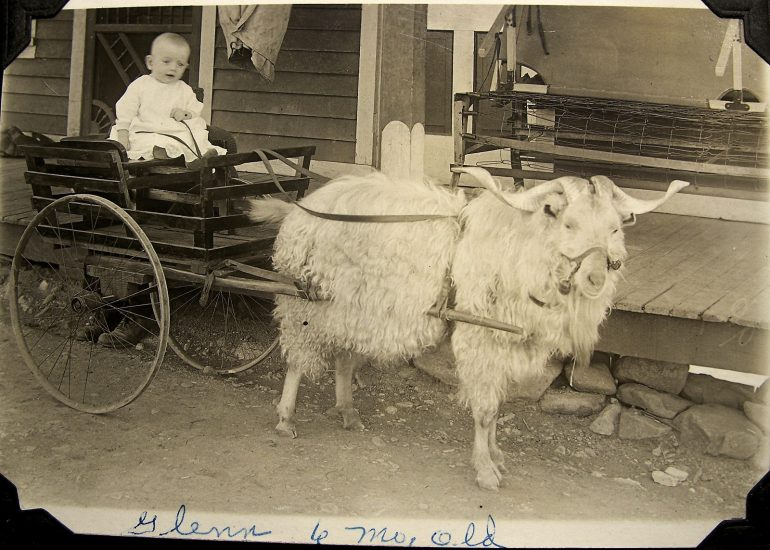Baby with a Goat Cart