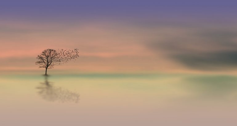 Image of a pastel purple, orange, and green sky with a tree and a large flock of birds flying from it