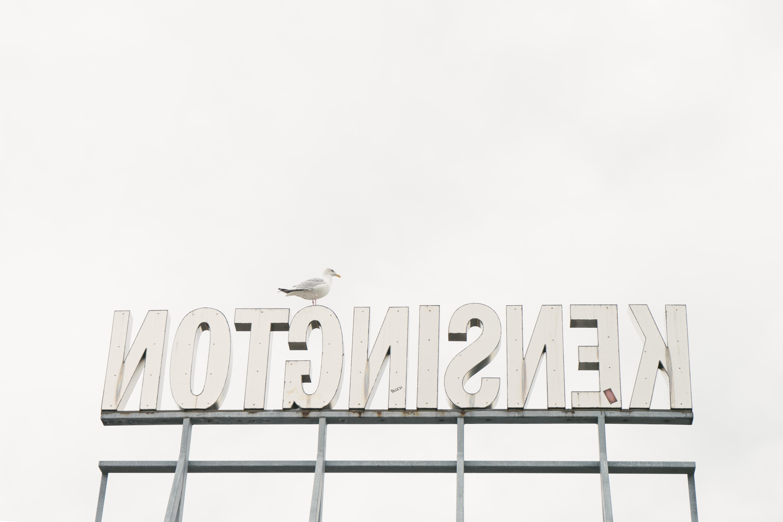 bird on top of backwards sign