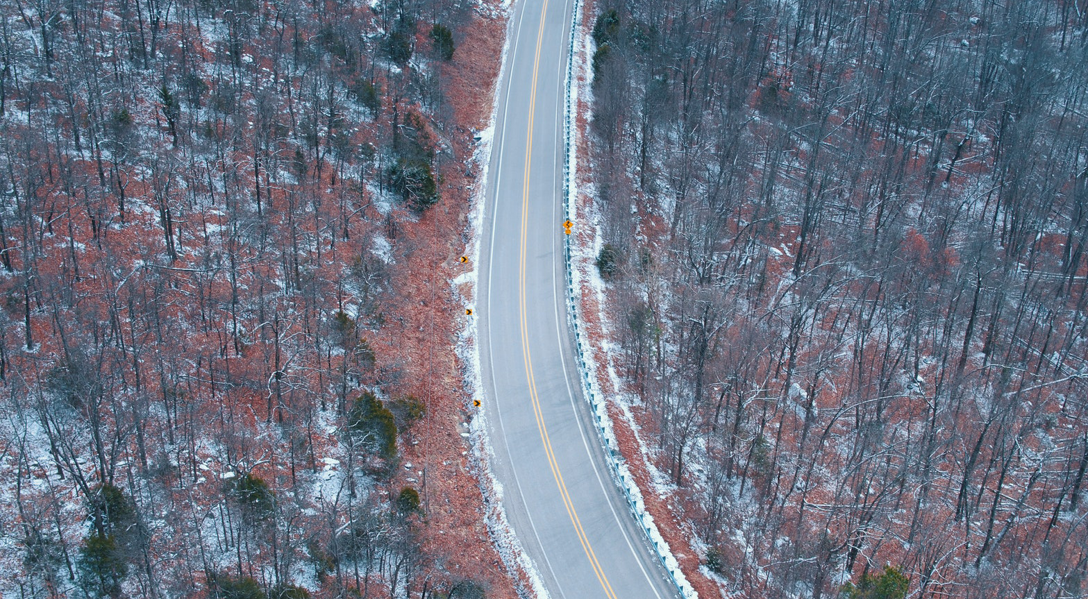 A curving road through a winter forest.