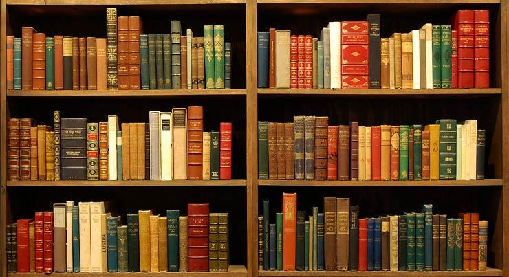 Photo of a fully stocked bookshelf