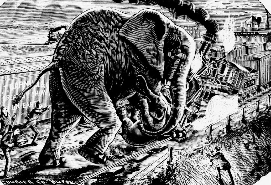 black and white drawing of an elephant running into an oncoming train