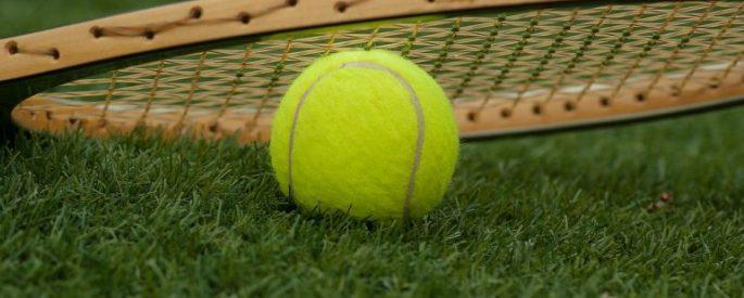 Tennis ball on the grass