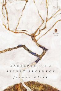 "Book cover of ""Excerpts from a secret prophecy"" by Joanna Klink"