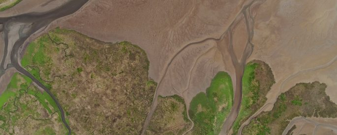 A drone shot of a marsh in a river estuary in the Discovery Bay