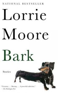 Book cover of Bark