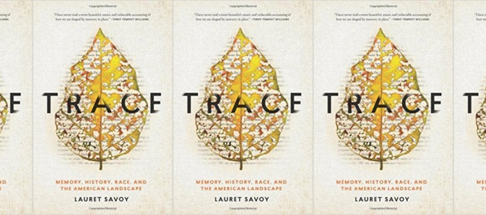 Book cover of Trace