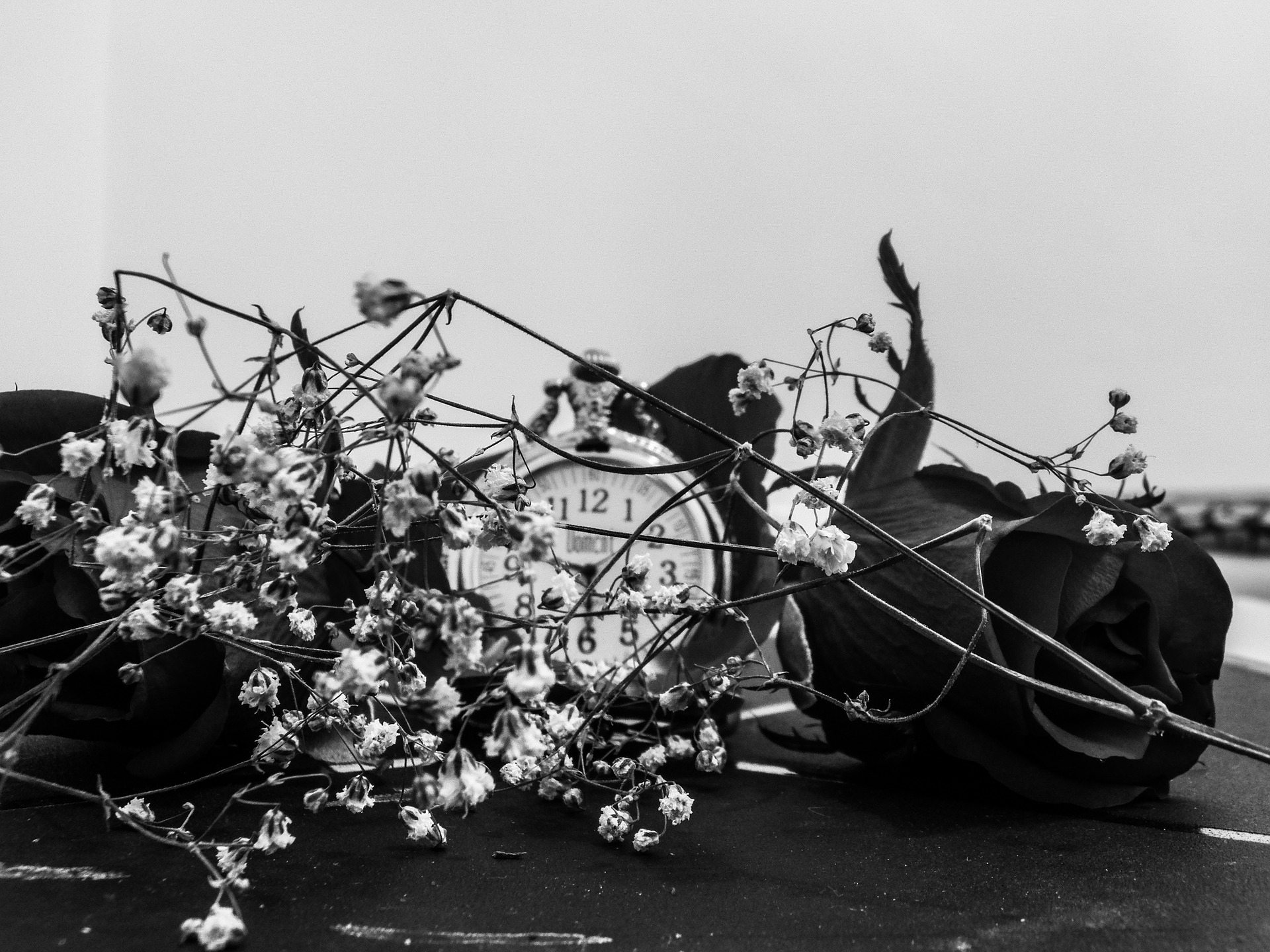 Black and white picture of a watch in between some dead flowers