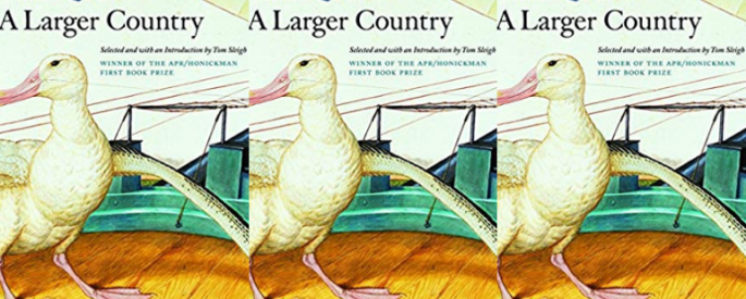 The cover of A Larger Country side by side.