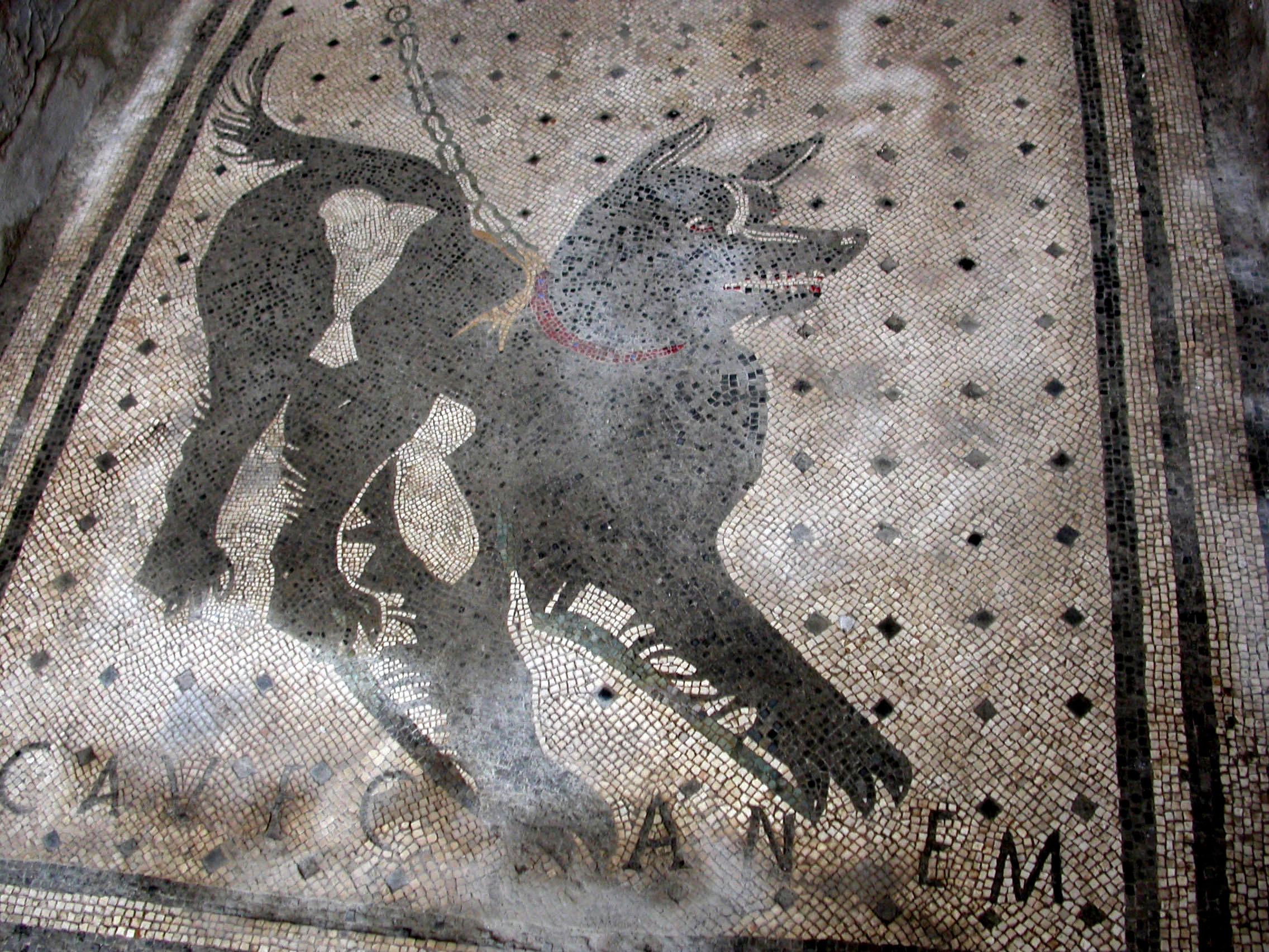 Picture of a Cave Canem dog made out of tiles.