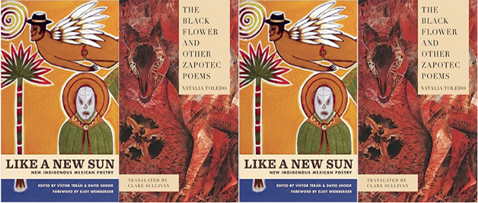 side by side covers of Like A New Sun and The Black Flower And Other Poems
