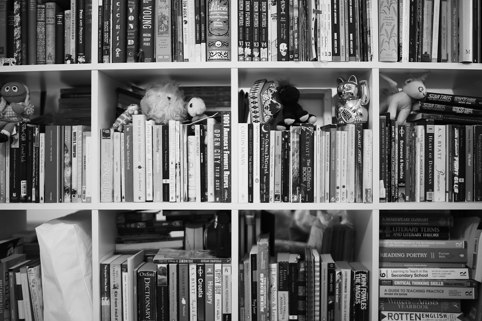 Black and white close up picture of a bookshelf with some stuffed animals and figurines on it.