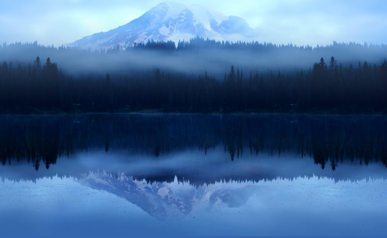 Mountain and forest reflected in water below