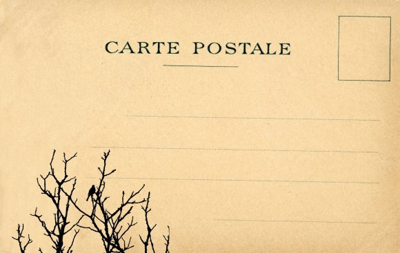 vintage-postcard-bird-tree