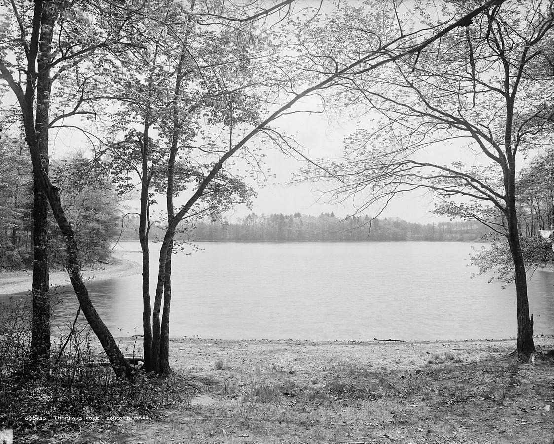 1123px-Walden_Pond