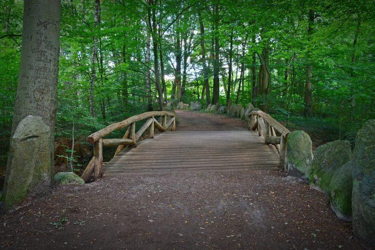 bridge-path