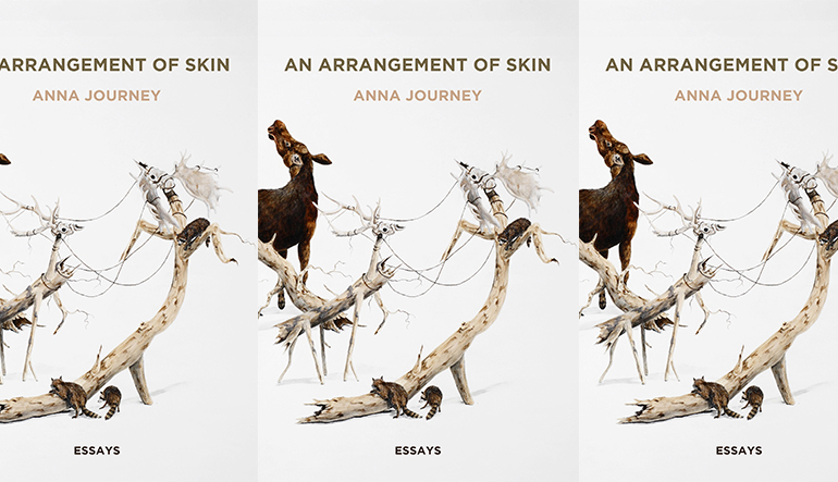 arrangement of skin_anna journey