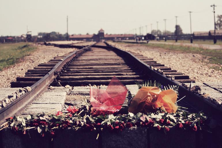 auschwitz-railroad-flowers