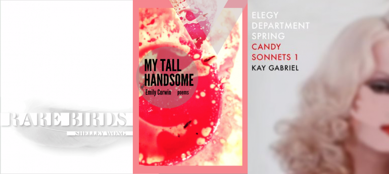 """Book covers for """"Bare Birds,"""" """"My Tall Handsome"""" and """"Candy Sonnets 1"""""""
