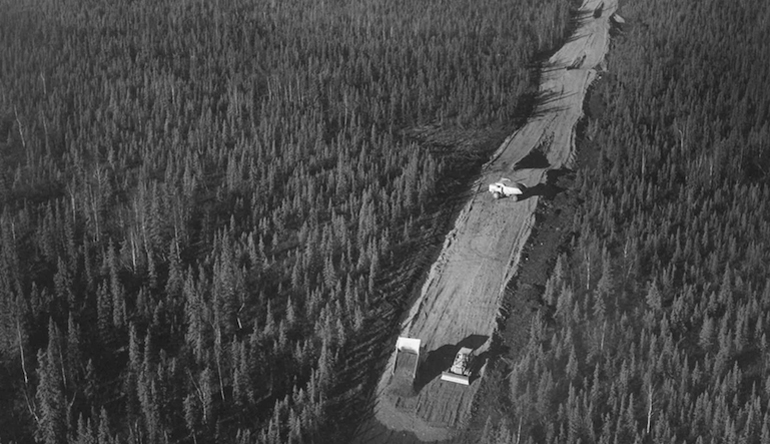 Developing road in the middle of a forest.