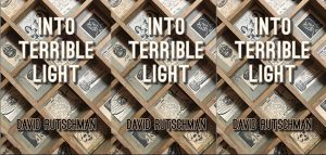 """Book cover of """"Into Terrible Light"""" with wooden compartment drawers behind the text."""