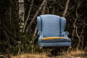armchair in the woods