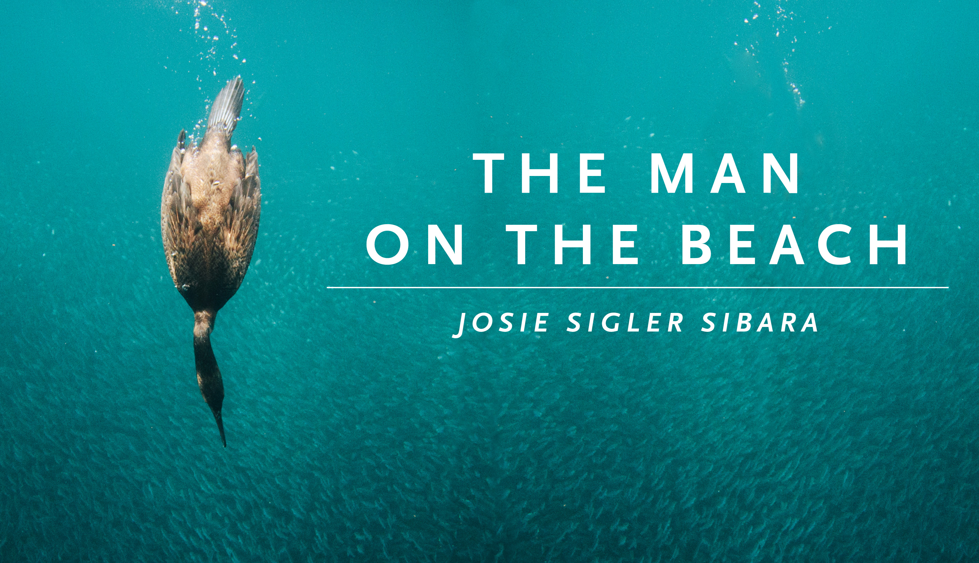 "Duck diving down in water with the text ""The Man on the Beach by Josie Sigler Sibara"""