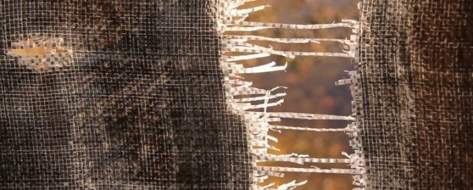 fabric that has been pulled apart, the two pieces connected only by threads