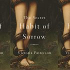 The Secret Habit of Sorrow cover in a repeated pattern