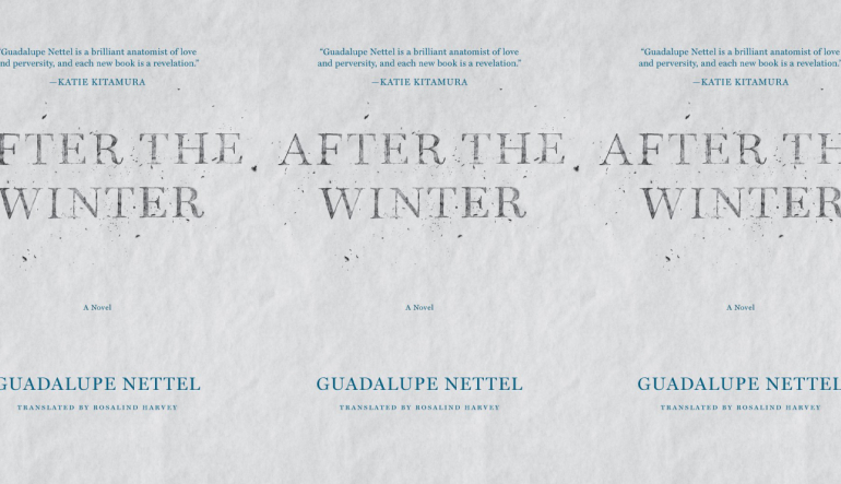 after the winter book cover in repeating pattern