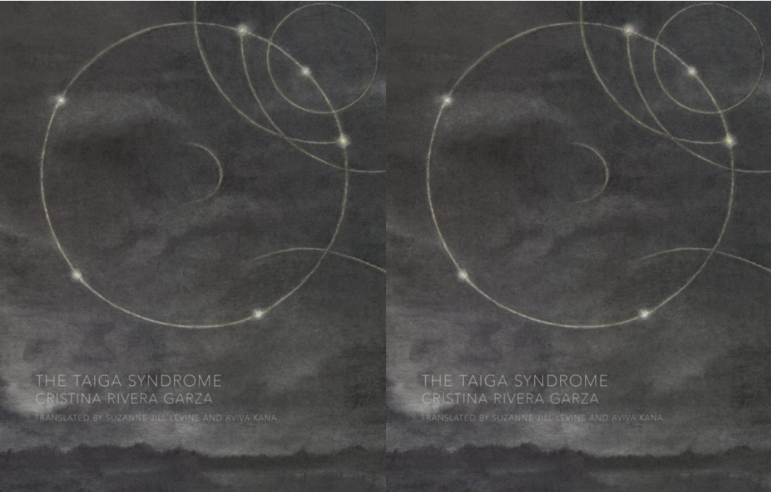 Image of the cover of Cristina Rivera Garza's novel The Taiga Syndrome