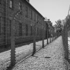 Black and white photograph of a pathway in Auschwitz with barbed wire fencing on both sides.